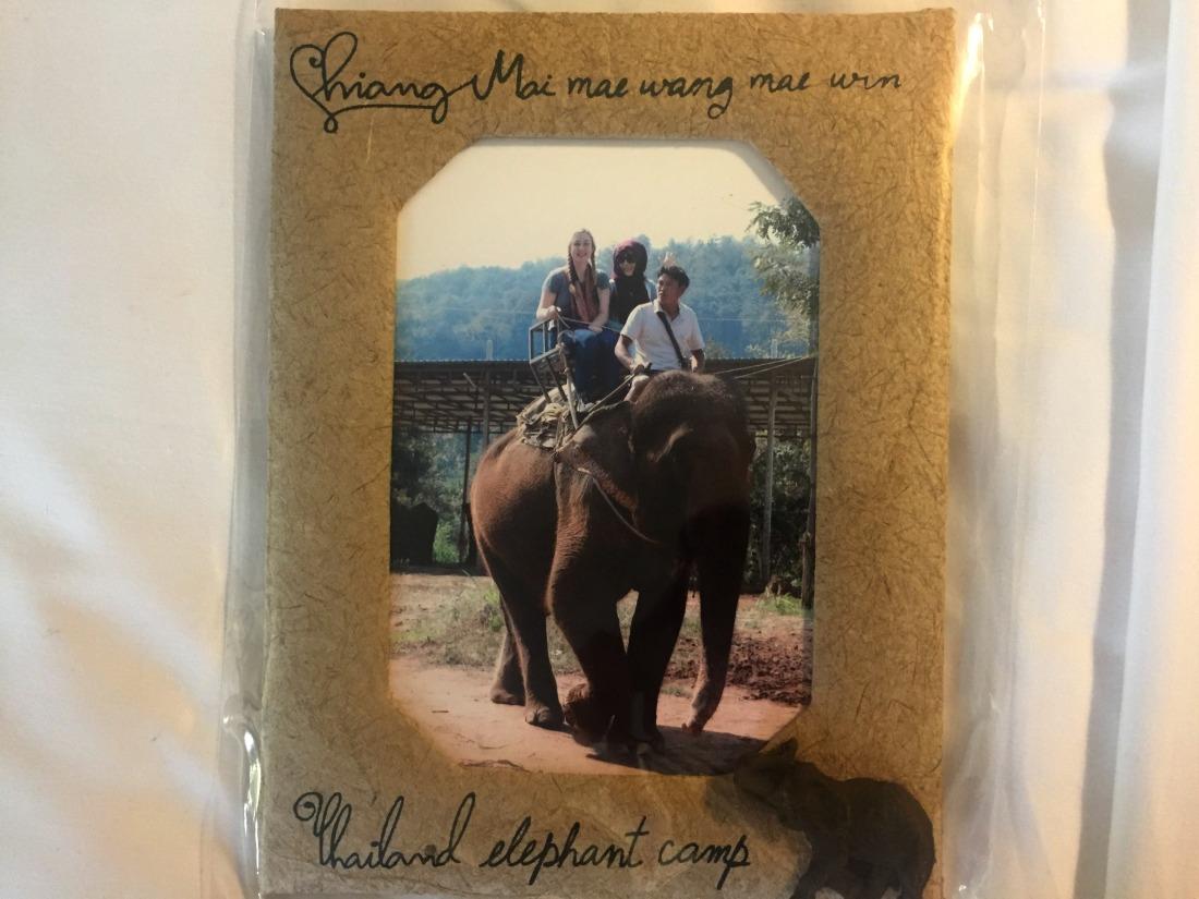 elephant-ride-2